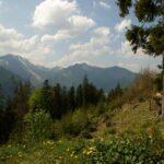 Выгодные инвестиции в маленьких Альпах
